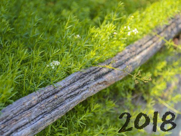 tendances végétales 2018