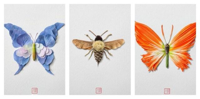 Insectes - Inoue