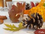 Feuilles d'automne … déco DIY
