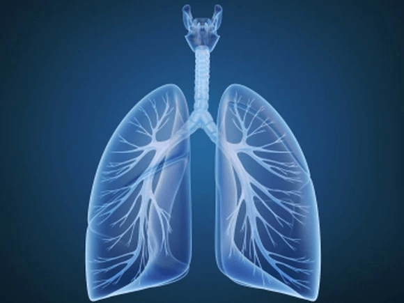 lung - Lung Cancer Rate Now Higher in Young Women Than Young Men