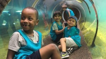 Kids enjoy a tunnel experience at the zoo.