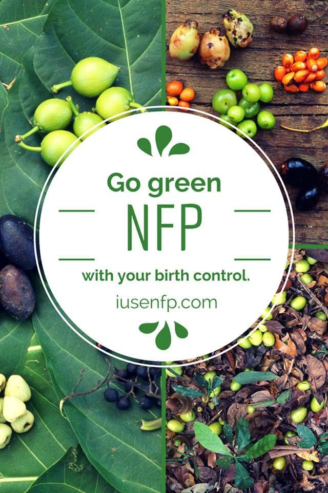 Nfp catholic birth control