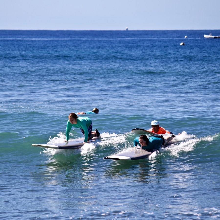 Surfing Lessons