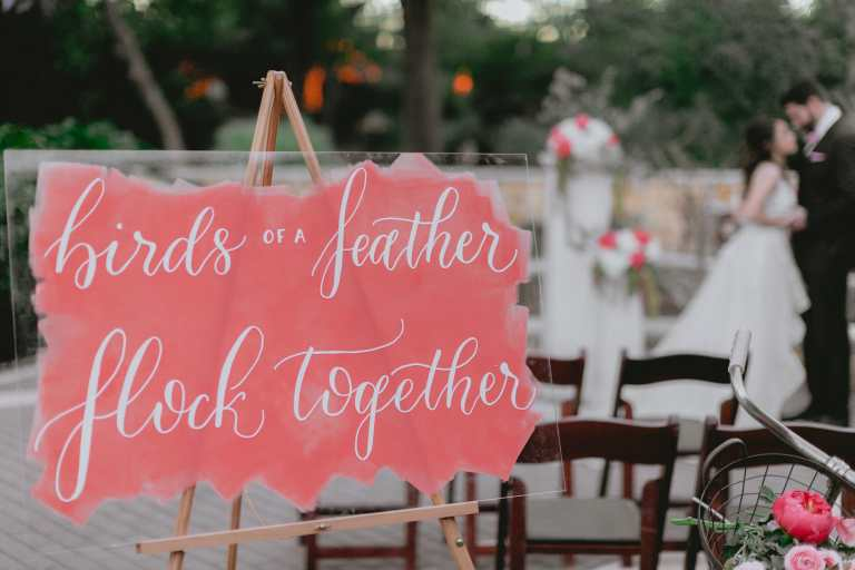 Flamingo Bird Inspired Coral Acrylic Wedding Welcome Sign Quote with Roller Paint Strokes and White Calligraphy at San Antonio Zoo by CalliRosa Calligrapher in San Antonio Texas