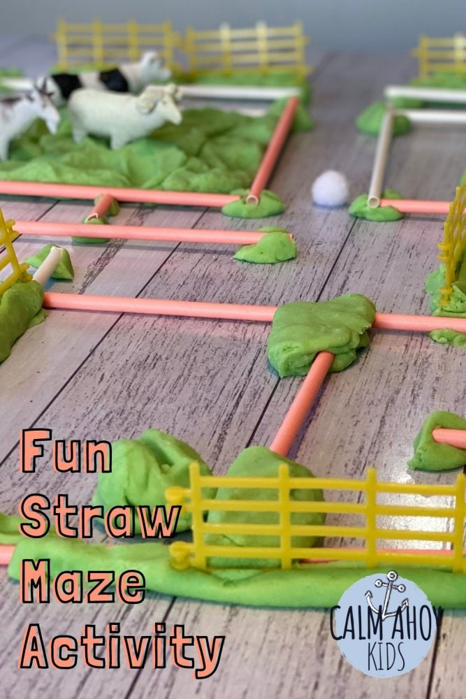 easy fun straw maze activity and craft