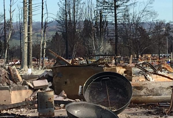Charred remains of the Coffey Park neighborhood in Santa Rosa, 2017