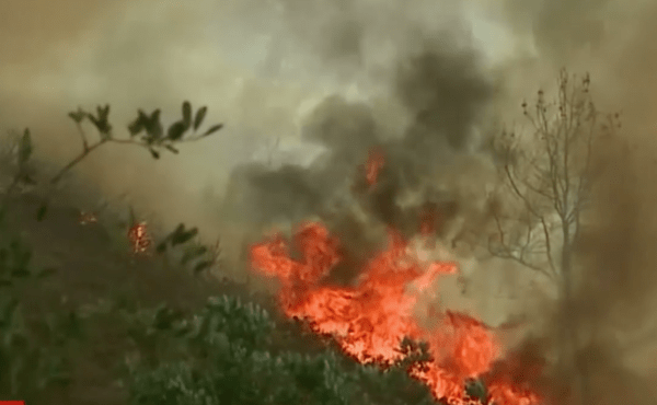 Flames from the Mendocino Complex fire send carbon into the air.