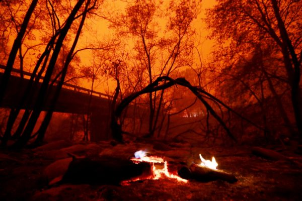 photo of PARADISE, CALIFORNIA - NOVEMBER 9: The Camp Fire smoke covers the Butte Creek on Honey Run Road in Paradise, Calif., on Friday, Nov. 9, 2018. (Ray Chavez/Bay Area News Group)