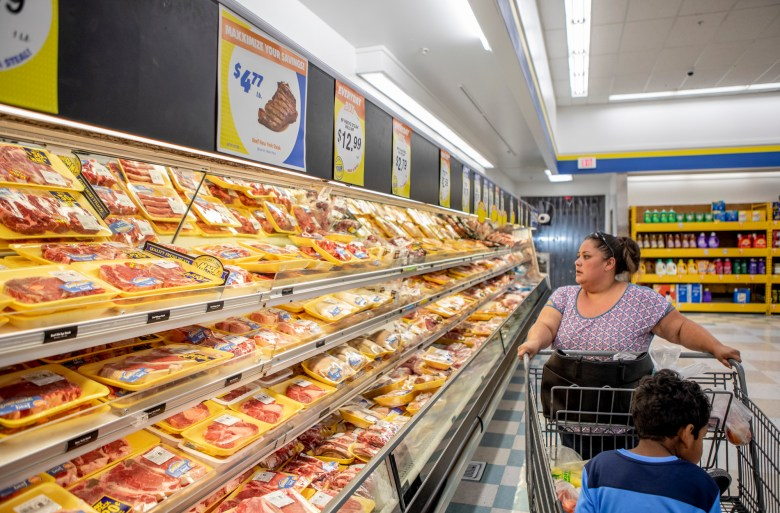 Antoinette Martinez does her weekly grocery shopping at FoodMaxx, and worries that new proposed Trump administration cuts to food stamp eligibility will make it harder for her to stretch her food budget. Photo by Anne Wernikoff for CalMatters