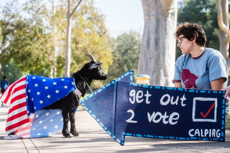 uc riverside, student voters, 2018 election