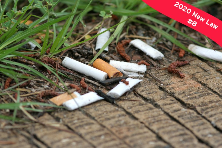Discarded cigarette butts on beach.