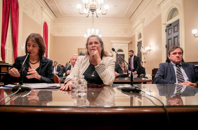 Abigail Disney, center, testifies in favor of Sen. Nancy Skinner's bill, SB 37, which would change the corporate tax rate to limit the earnings of CEOs in proportion to their workers