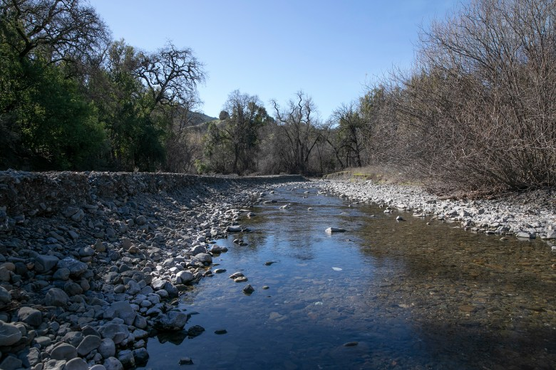 Low water levels in Morrison Creek a tributary that feeds into the Russian river near La Ribera vineyard. Photo by Anne Wernikoff for CalMatters