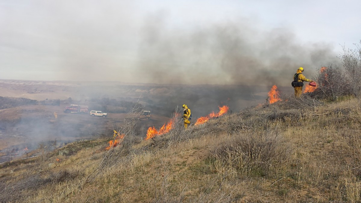 Firefighters burn tall grass on a strip near San Diego extending 8.5 miles from Julian to Cuyamaca State Park to protect nearby communities from wildfires originating in the desert to the east. Photo courtesy of CAL FIRE