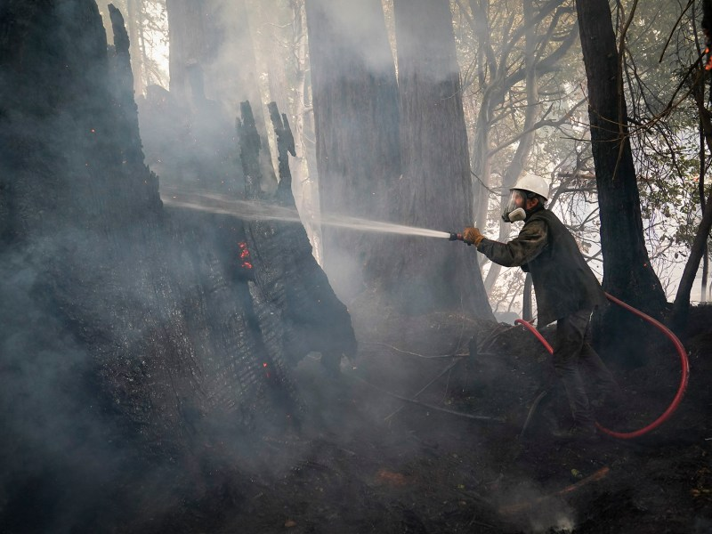 Jesse Katz joins the firefighting effort as a civilian volunteer battling the CZU August Lightning Complex Fire on Aug. 21, 2020, in Bonny Doon. Photo by Marcio Jose Sanchez, AP Photo