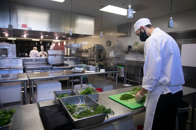 Brody Stephen, a student in the cooking fundamentals class, chops herbs in an almost-empty classroom at Diablo Valley College on Nov. 18, 2020. Culinary classes used to have 25-30 students but are now limited to 8 due to social distancing measures. Photo by Anne Wernikoff for CalMatters