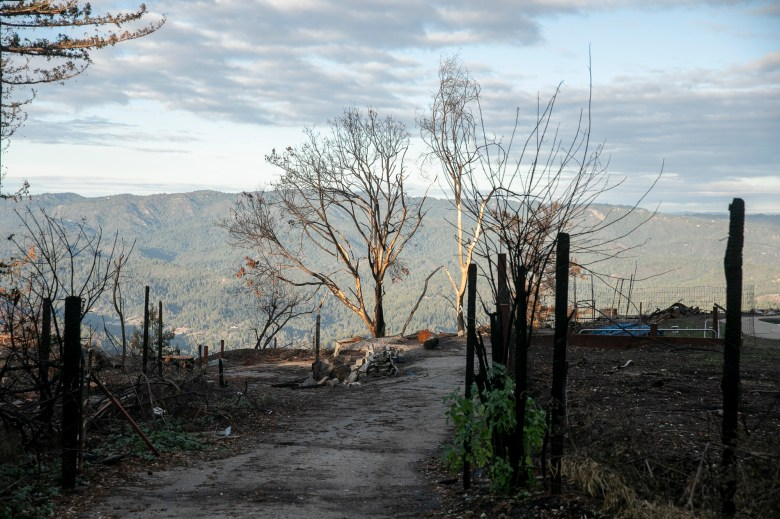A scorched property overlooking Foreman Creek in Bonnie Doon on Dec. 15, 2020. The small community of Bonnie Doon, a town outside of Santa Cruz, was ravaged by the CZU Lightening Complex Fires in August. Photo by Anne Wernikoff for CalMatters