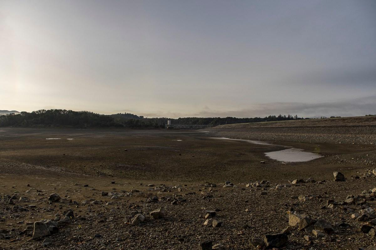 El lago Mendocino, un embalse que sirve a la región, está en gran parte seco debido a las condiciones de sequía. Foto de Bobby Cochran Fotografía cortesía de Russian River Flood Control, & Water Conservation Improvement District