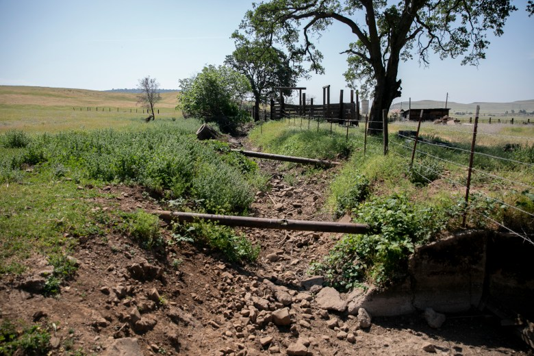 A creek that once ran through Megan Brown's property is already dry before the summer comes on April 22, 2021. Photo by Anne Wernikoff, CalMatters