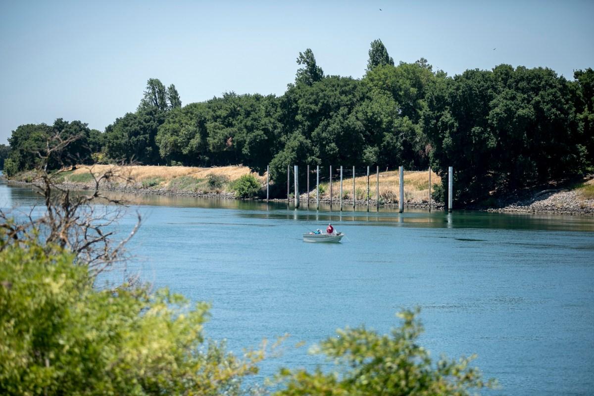 Los navegantes pescan en el río Sacramento en las afueras de Isleton. Los suministros de agua del delta de San Joaquín-Sacramento son insuficientes, por lo que el estado advirtió a miles de usuarios que dejen de bombear. Foto de Anne Wernikoff, CalMatters