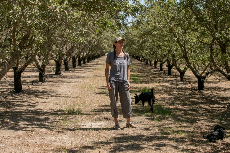 Almond farmer Christine Gemperle in her Ceres almond grove on Aug. 25, 2021. Gemperle has experimented with new irrigation systems and different breeds of almonds to counteract her dry, salty land. Photo by Anne Wernikoff, CalMatters
