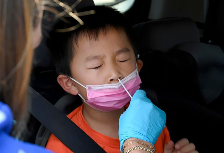 Nathan Bian, 5, gets swabbed for a rapid COVID-19 test at Palos Verdes High School in Palos Verdes Estates on Aug. 24, 2021. Photo by Brittany Murray, Press-Telegram/SCNG
