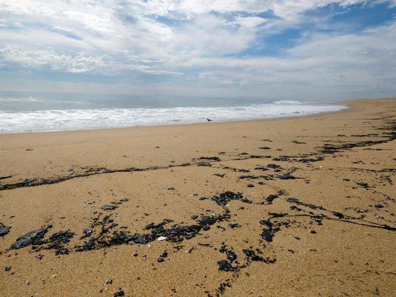 Oil washes up on a beach in Newport Beach, on Oct. 4, 2021. A major oil spill off the coast of Southern California fouled popular beaches and killed wildlife while crews scrambled Sunday, to contain the crude before it spread further into protected wetlands. Photo by Ringo H.W. Chiu, AP Photo