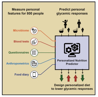 Graphical abstract of study on Individual glycemic response discussed in CALMERme.com