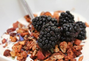 Image of flowery grainless granola recipe from CALMERme.com