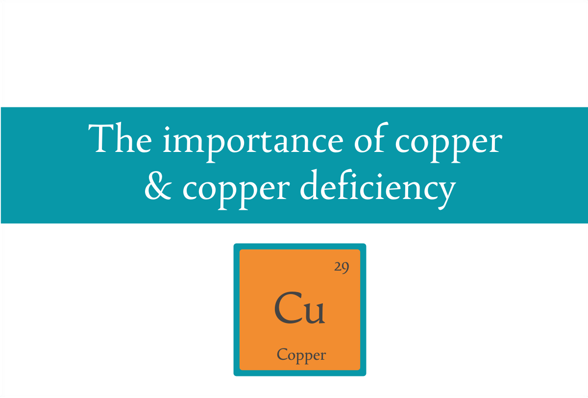 Blogheader for post on the importance of copper and copper deficiency from CALMERme.com