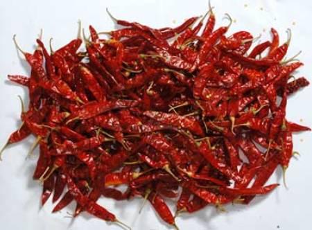 guntur-red-chillies-759662
