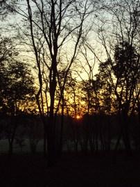 sunset-boston-manor-park
