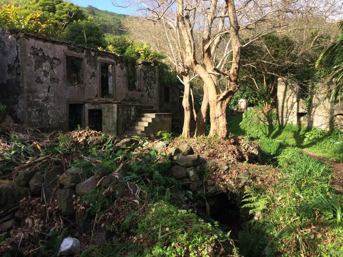 View of Casa dos Figos Maduros, Casa do Verde, and Casa da Gueixa