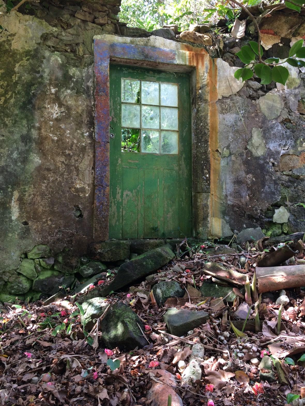 Porta da casa 6