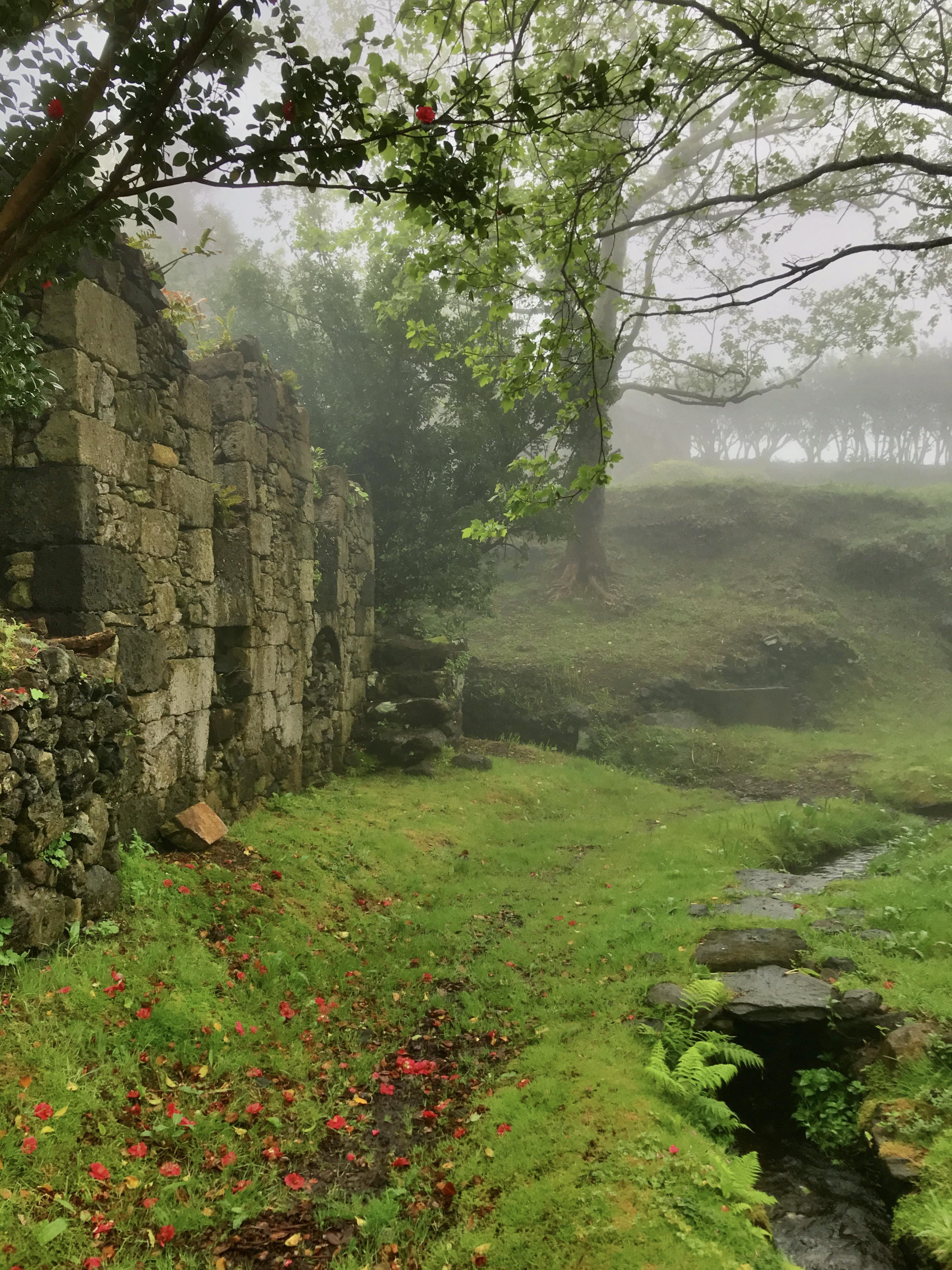 Casa da Gueixa under mist