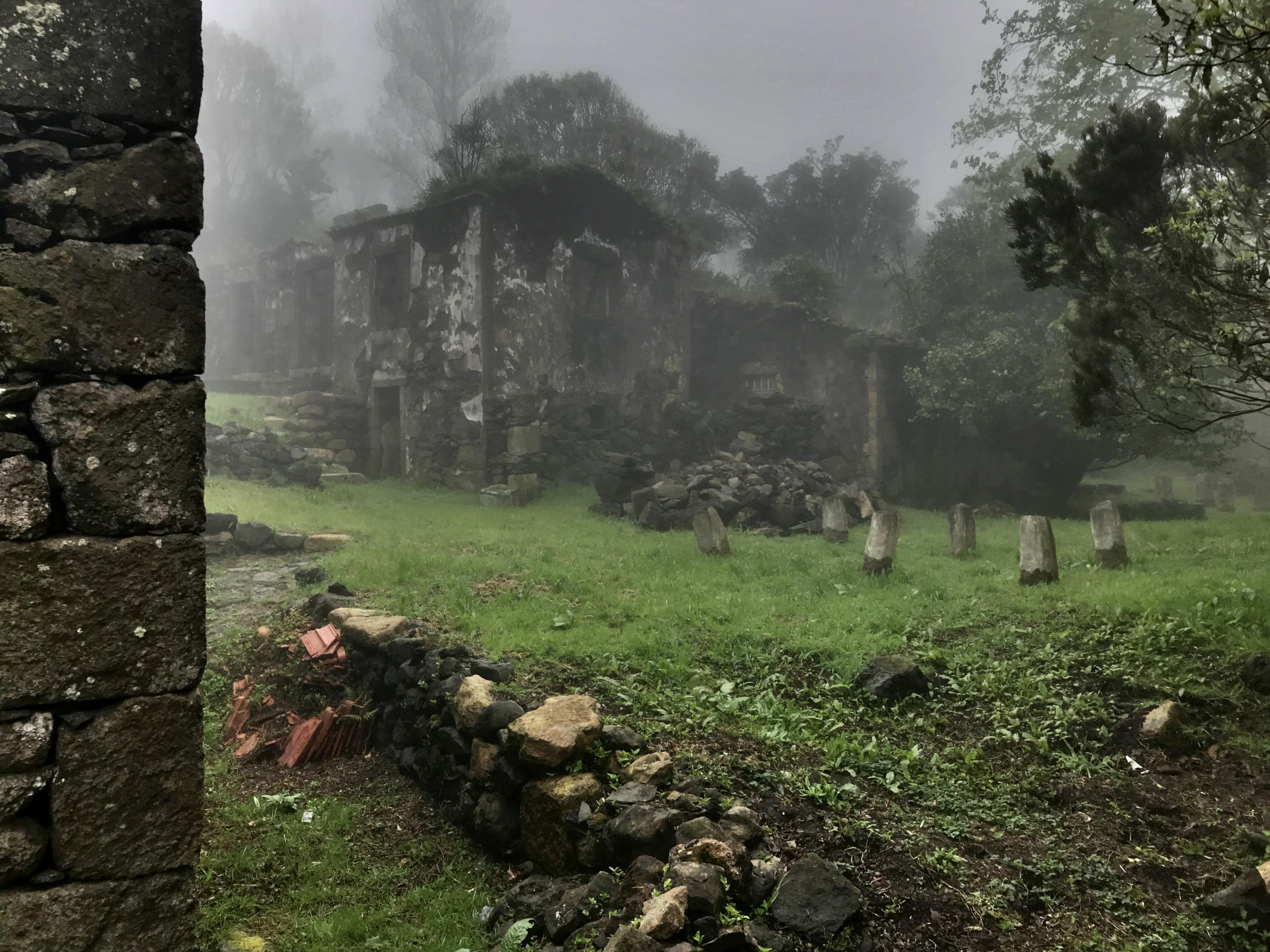 Casa das Figueiras and Casa das Flores under the mist