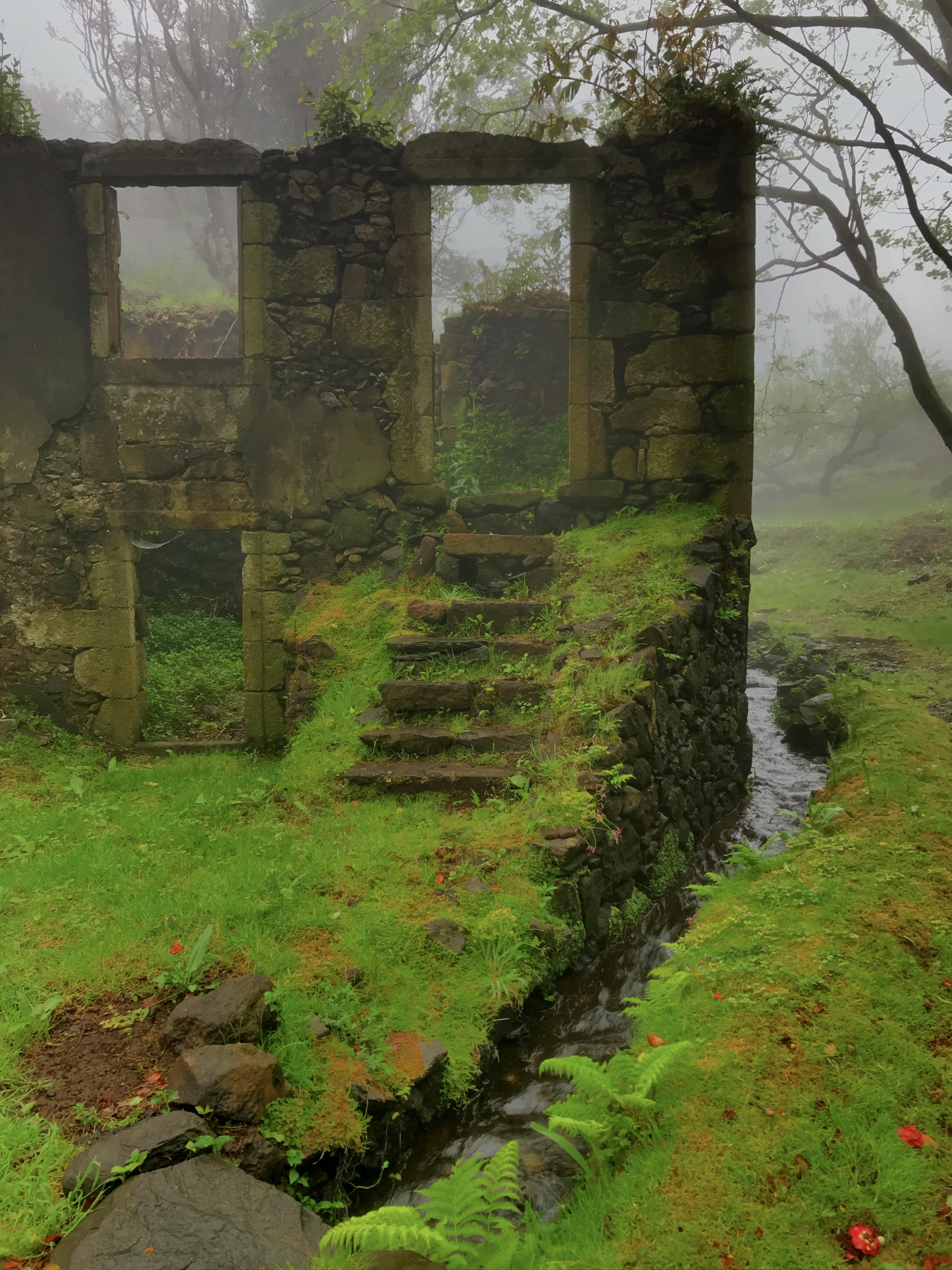 Casa do Verde under mist