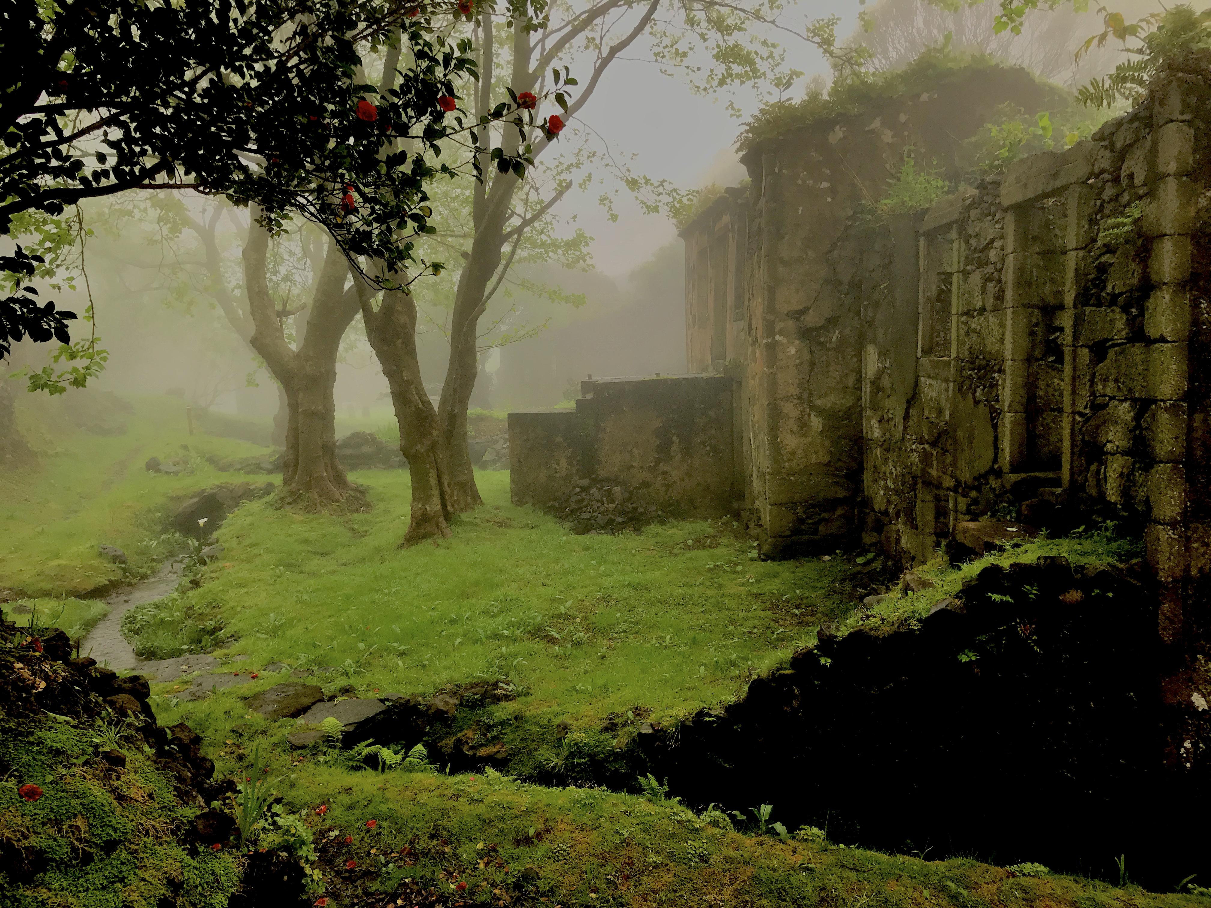 Casa dos Figos Maduros e Casa do Verde sob o nevoeiro