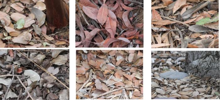 guide mulch
