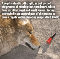 A coyote whistle call (right) is just part of the process of hunting these predators, which have excellent sight and smell senses. Facing downwind is an integral part of the process to coax a coyote within shooting range. (TIM E. HOVEY)