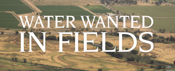 """WATER WANTED IN FIELDS"" printed in white over a dry grassland"