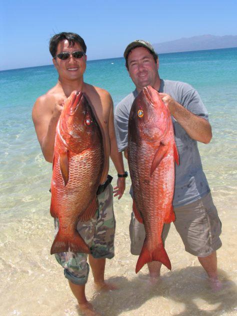 Baja fishing 9