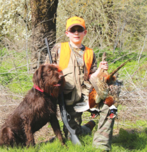 The author's son, Kazden Haugen, with a pair of pheasants taken over Lon, a pudelpointer from Tall Timber Pudelpointers. After this hunt, the Haugens decided on this breed of dog for their family, but only after two years of researching breeds. (SCOTT HAUGEN)