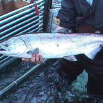 Recduced Salmon Season Causing Stress For Fishers
