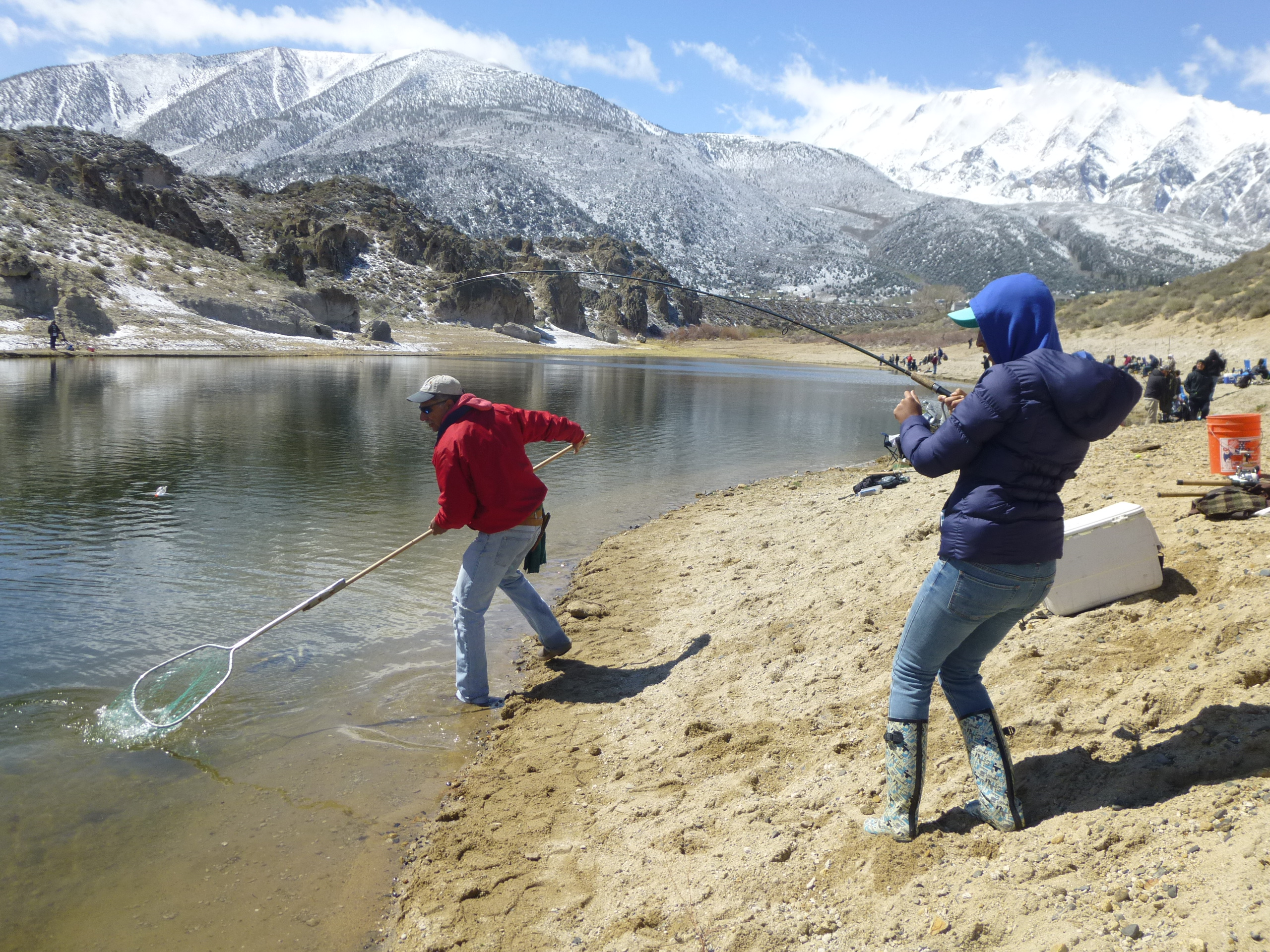 Countdown to the trout opener eastern sierra preview for Eastern sierra fishing