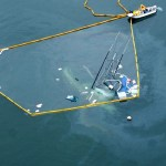 CDFW Accepting Proposals For Oil Spill Research