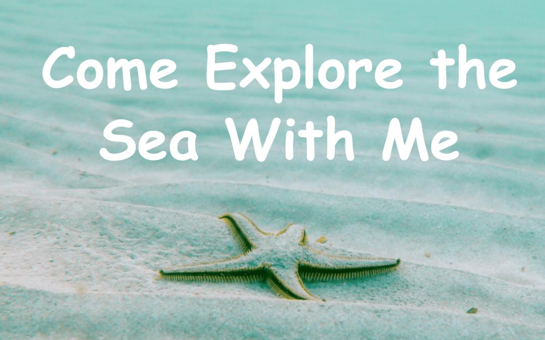 Come explore the sea
