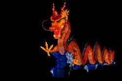Un dragon Gaillac