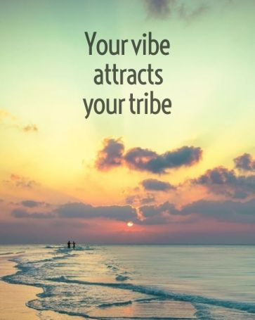 Vibe with your tribe