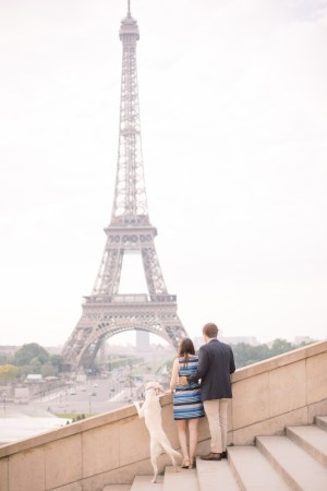 Pet Friendly Paris: Things to do in Paris with your Dog